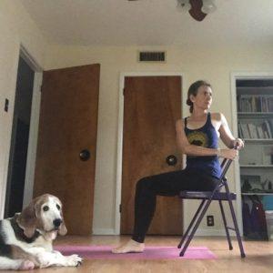 Chair Yoga Seated Twist